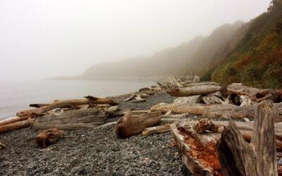 Langs de kusten van Vancouver Island